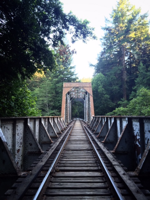 how to overcome fear of crossing bridges